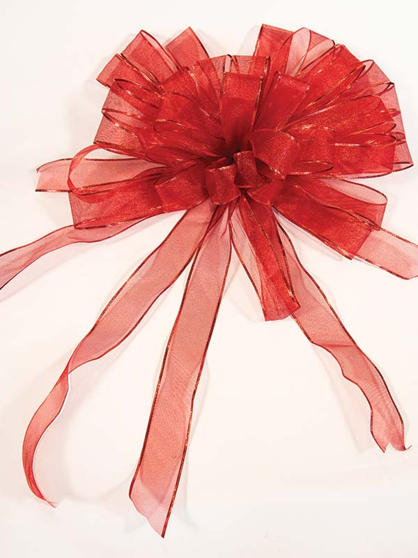 Red Sheer Red Trim Bow